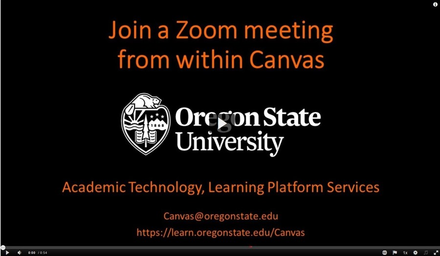 Join a Zoom meeting from Canvas
